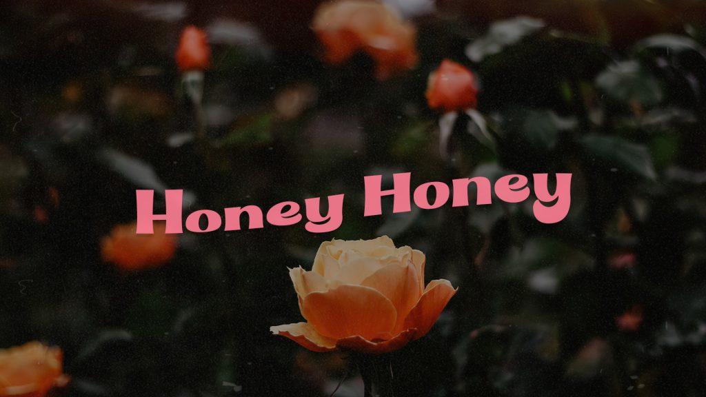 Honey Honey, webshop voor persoonlijke- en spirituele ontwikkeling.